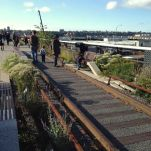 Best Sight-Seeing in NYC, The Highline