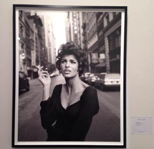 Steven Meisel at Phillips, NYC